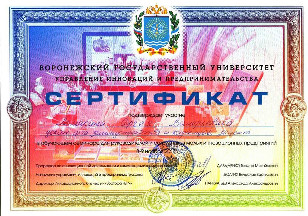 2013-11-08_lomakin_sertifikat_innovacii